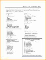 Computer Skill Resume Examples Puter Skills To Put Elegant Section