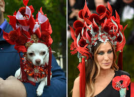 Tompkins Square Park Halloween Dog Parade Winner by Halloween 2015 Pet Costume Ideas At New York U0027s Tompkins Square