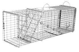 live cat trap tomahawk professional flush mount trap w one trap door easy