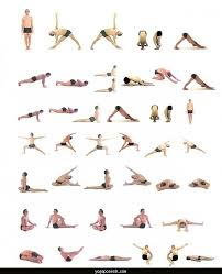 Easy Hatha Yoga Sequence
