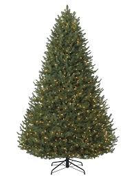Leyland Cypress Christmas Tree Farm by Types Of Christmas Trees