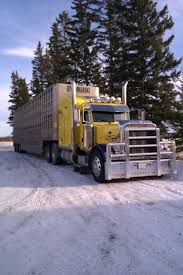 2007 379 Peterbilt Owner: Lars Knutson Hauling For Stochmanski ... S And T Trucking Livestock Relocation Kenworth Cattle Trucks Midwest Group More About Our Professional Trucking Company In Huron Sd Legislation Introduce To Study Regulations Reform Jvlx Inc Home Firms Worried Electronic Logging Device Could Hurt Lunderby Llc About Us Vanee These Are The People Who Haul Our Food Across America Salt Npr Connolly American Truck Simulator Peterbilt 389 Hauling Youtube