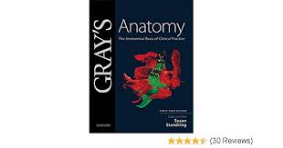 Gray s Anatomy E Book The Anatomical Basis of Clinical Practice