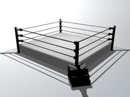 Wrestling Ring Bed Frame | Susan Decoration Backyard Wrestling Link Outdoor Fniture Design And Ideas Taekwondo Marshmallow Mondays Custom Remco Awa Wrestling Ring Wrestlingfigscom Wwe Figure Forums Homemade Selbstgemachter Youtube Kyushu Pro 164 Escaping The Grave Pinterest Trampoline 5 Steps Trailer Park Boys Of Bed Inexterior Homie Backyard Ring Party My Party Next Door How Young Bucks Revolutionised Professional