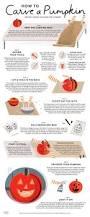 Free Tardis Pumpkin Stencil by 57 Best Pumpkin Carvings Images On Pinterest Halloween Pumpkins