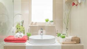 Plants For Bathrooms With No Light by Reed Palm Dehumidifier Bathroom Feng Shui Location Cactus In
