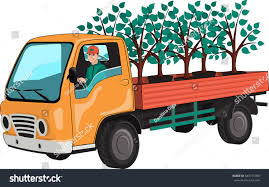 Truck Tree Seedlings Stock Vector 643151080 - Shutterstock Self Driving Semitruck Makes The First Ever Autonomous Beer Run Foreign And Domestic Bit Like Usuk Team In Wapu 16 Vector Icon Set Bio Sun Stock 730901725 Shutterstock Viagrow 205 X 85 Seed Propagating Seedling Heat Mat Planting Tomatoes Across Road Meridian Jacobs Blog Allan House Shanti Rob Outdoor Courtyard Twinkle Lights Urban Gardening Crazy Summer Weather Sweet Si Bon Sfpropelled Seedling Transport Machine Sc650 Sc650 Petros Windmill 737753128 Trays Zimbabwe Absurdity Flybasket Ride Today Plant Tomorrow Farmlog Rice Seedlings Collaboration With Gardens Of Eagan Tiny Diner