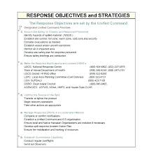 Sample Action Plan Template Safety Corrective Food Images Of Blank Format Personal Plans In