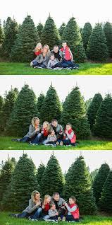 Christmas Trees Vancouver Wa by Family Christmas Tree Farm Christmas Lights Decoration