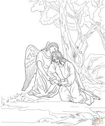 Coloring Pages Garden For Adults Secret Free Agony Page Fairy