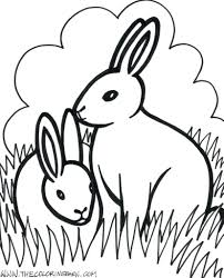 Farm Animals Color Sheets Printable Animal Coloring Pages Free Sweet Image For Adults Full Size