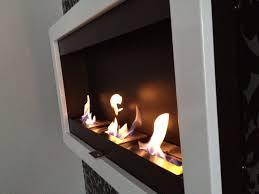 wohnzimmer bioethanol kamin caseconrad