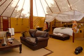 African Safari Themed Living Room by Zimbabwe U0026 Zambia In Africa Sikeleli Africa Safaris