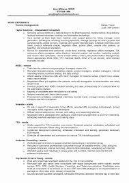 Networking Fresher Resume Format Best Of Finance Manager Sample Outstanding