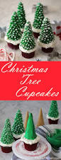 Best Kinds Of Christmas Trees by Best 25 Christmas Tree Cake Ideas On Pinterest Christmas Tree