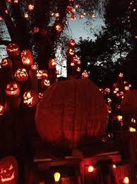 Roger Williams Pumpkin Festival 2017 by The 2016 Jack O U0027lantern Spectacular At Roger Williams Park