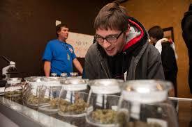 Bergmans Pumpkin Patch by Colorado Topped 1 Billion In Legal Marijuana Sales In 2016