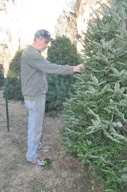 Christmas Tree Farm Lincoln Nebraska by Tis The Season For Trees And Wreaths News Beatricedailysun Com