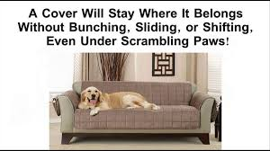 Best Fabric For Sofa Cover by Best Pet Furniture Covers Protect Your Couch Or Sofa Youtube