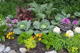Ideas from the Alaska Botanical Garden