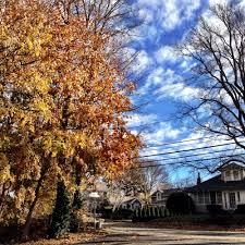 Christmas Tree Shop Sagamore Bridge Address by Beth Colt Author At Woods Hole Inn