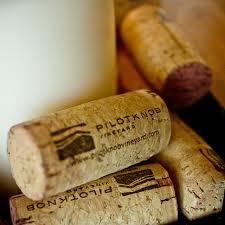 Pilot Knob Winery in Burnet love it