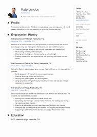 √ 20 Business Owner Job Description For Resume ...