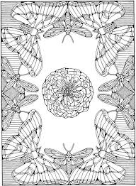 Free Advanced Adult Coloring Pages Butterfly Page For
