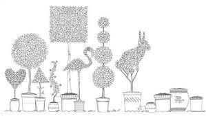 Secret Garden Coloring Book Illustration