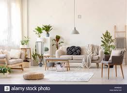 pouf auf teppich und pflanzen im geräumigen wohnzimmer