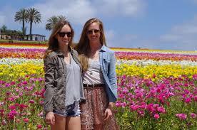 Pumpkin Patch Carlsbad Mall by San Diego Local Spot Carlsbad Flower Fields