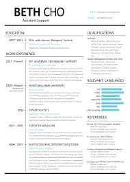 Resume Example Profile Astonishing Of On