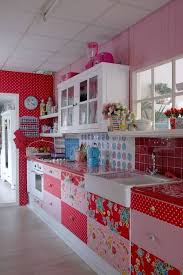 Exceptional Red And Pink Kitchen Part