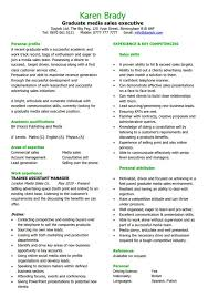 Sale Executive Resume Template