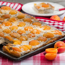 aprikosen mohnkuchen