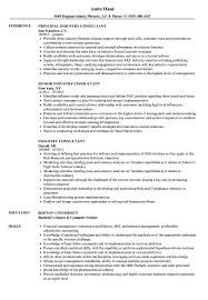 Download Industry Consultant Resume Sample As Image File