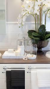 Plants In Bathrooms Ideas by Best 20 Bathroom Staging Ideas On Pinterest Bathroom Vanity