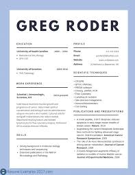 Best Resume Sample For It Professionals Refrence Cv Examples At