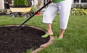 Which Type Mulch Is Best For Your Garden