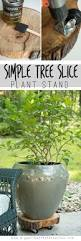 Patio Plant Stand Uk by Best 25 Plant Stands Ideas On Pinterest Outdoor Plant Stands