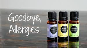 5 Ways To Use Essential Oils For Allergies 25 Off Exotic Metal Works Coupons Promo Discount Codes Affordable Essential Oils Diy For Beginers With Edens Garden Prime Natural Spicy Saver Oil Blend 10ml Get W Skinmedix Coupon Discount Codes Fyvor Peeps And Company Coupon Energy Ogre Code 2019 Of Eden Zulily February Oreilly Auto Parts Hard Candy Promo Black Friday 5 Ways To Use Allergies