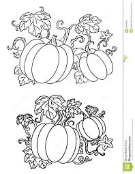 Black and white line drawings of pumpkins