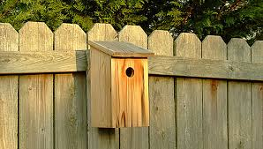 Lowes Homes Plans by Basic Birdhouse