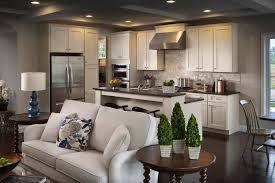 Interesting Ideas Living And Dining Room Together Small Spaces Kitchen Open Space