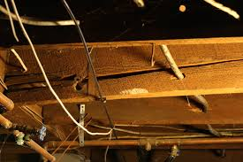Sistering Floor Joists With Plywood by Cracked Floor Joist Pro Construction Forum Be The Pro