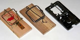 tom cat mouse trap they t built a better mousetrap business insider