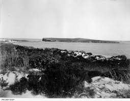 100 Dmh Australia South Island South Wikipedia