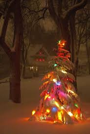 Lighted Spiral Christmas Tree Outdoor by Best 25 Lighted Christmas Trees Ideas On Pinterest Outdoor