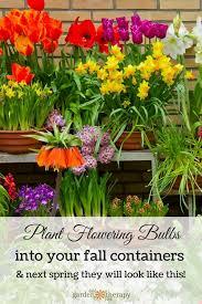 preparing fall bulb planters for