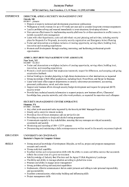 Download Security Management Resume Sample As Image File